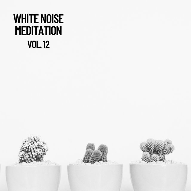 White Noise Meditation Vol. 12, The White Noise Zen & Meditation Sound Lab