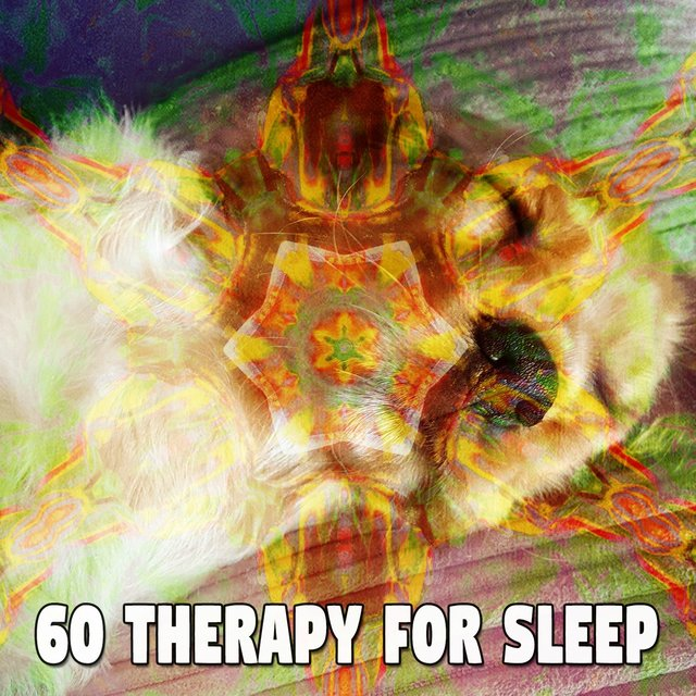 60 Therapy for Sle - EP