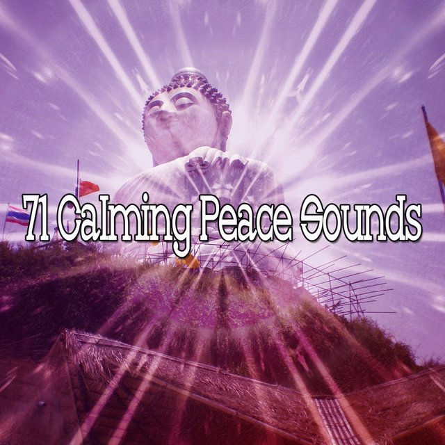 71 Calming Peace Sounds