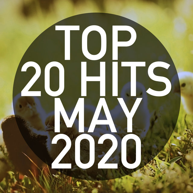 Top 20 Hits May 2020