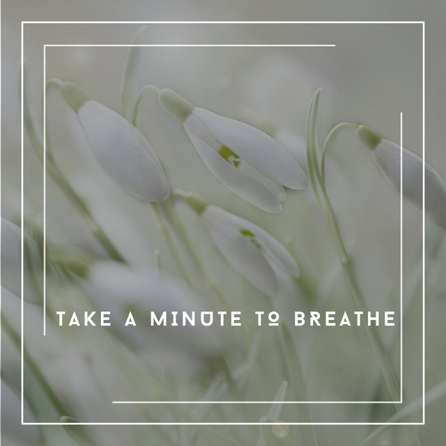 Take A Minute To Breathe - Chill Sounds, Calm Vibes