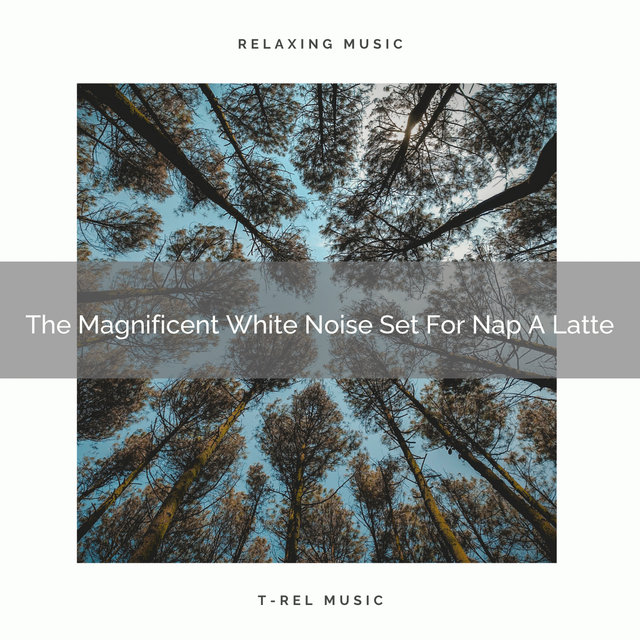 The Magnificent White Noise Set For Nap A Latte