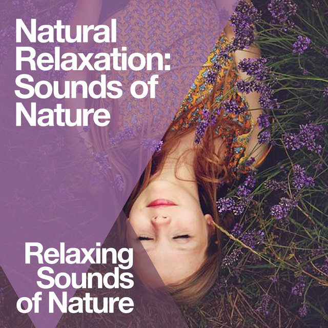 Natural Relaxation: Sounds of Nature