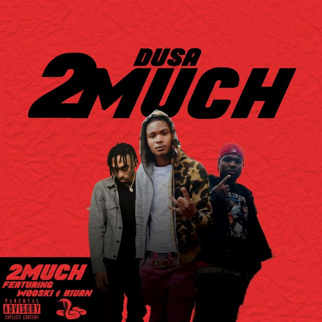 2 Much (feat. B1uan & Wooski)