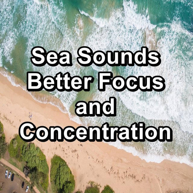 Sea Sounds Better Focus and Concentration