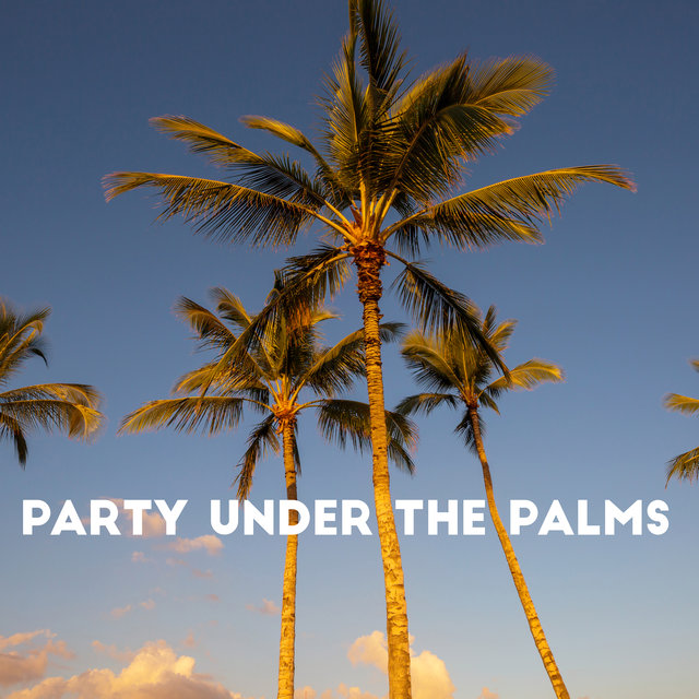 Party Under the Palms – Chillout Lounge, Sweet Summer Days, Secret Sin, Memories