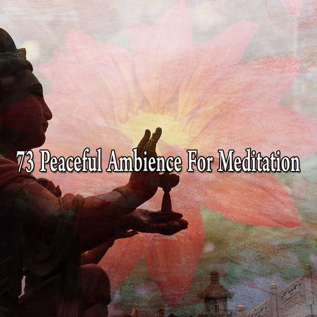 73 Peaceful Ambience for Meditation