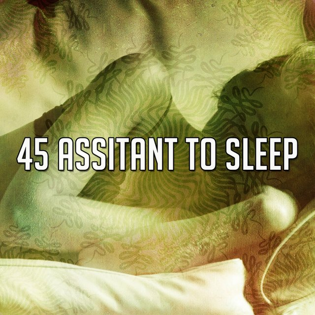 45 Assitant To Sleep