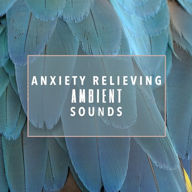 Anxiety Relieving Ambient Sounds