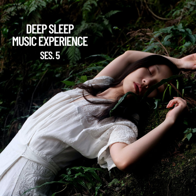 Deep Sleep Music Experience, Session 5