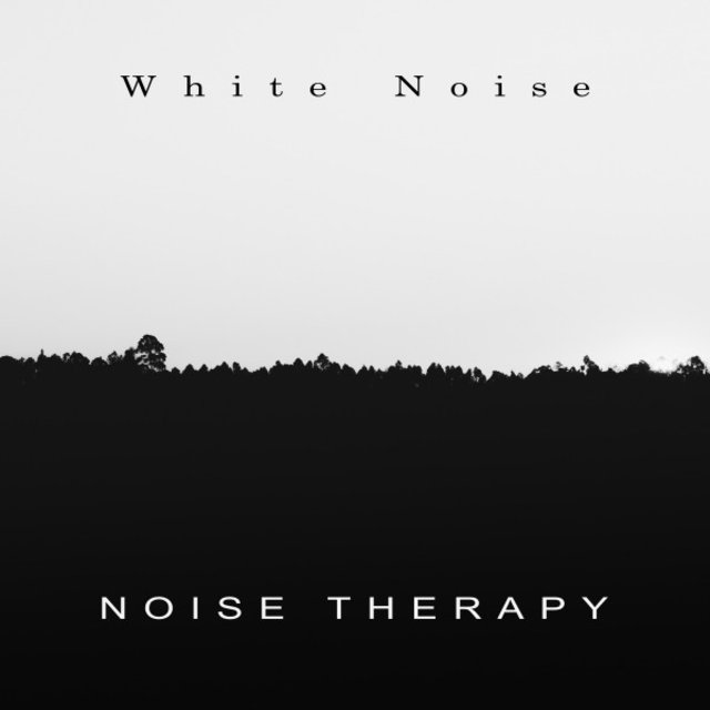 Noise Therpay