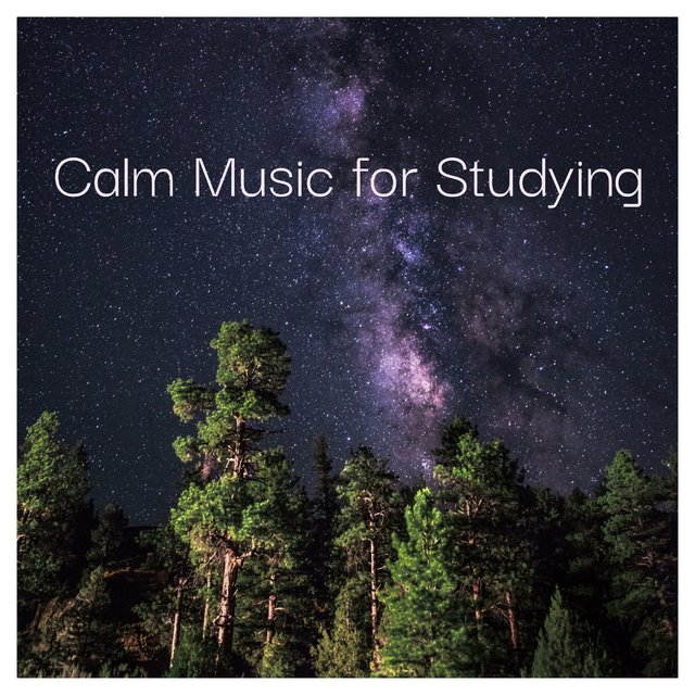 Calm Music for Studying