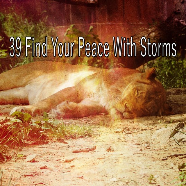 39 Find Your Peace with Storms