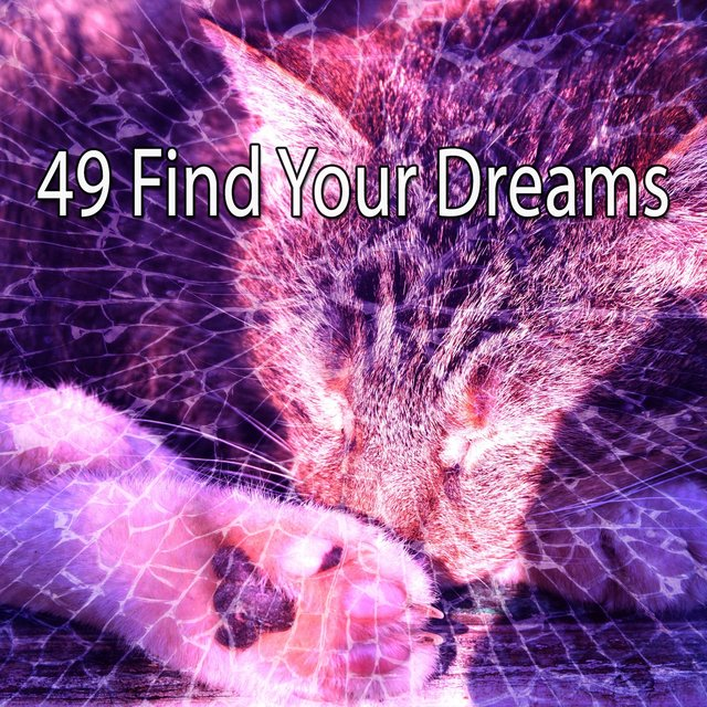 49 Find Your Dreams