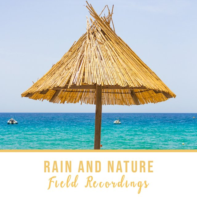 """ Spiritual Native Rain and Nature Field Recordings """