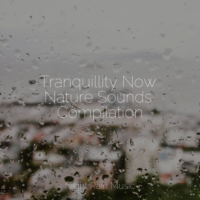 Tranquillity Now Nature Sounds Compilation
