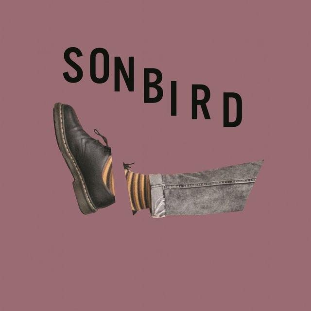 Cover art for album Głodny by Sonbird