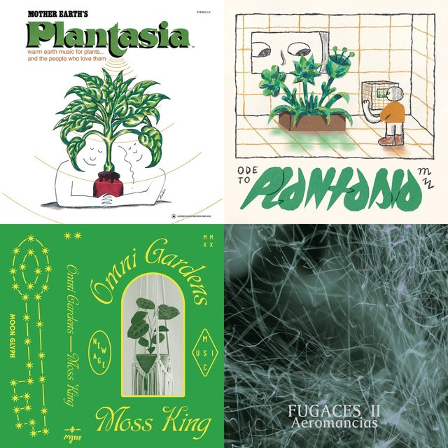 Cover art for album MUSIC FOR PLANTS by User