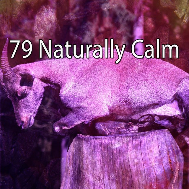 79 Naturally Calm