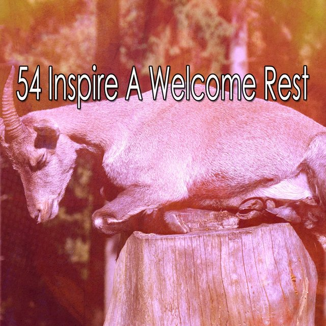 54 Inspire A Welcome Rest