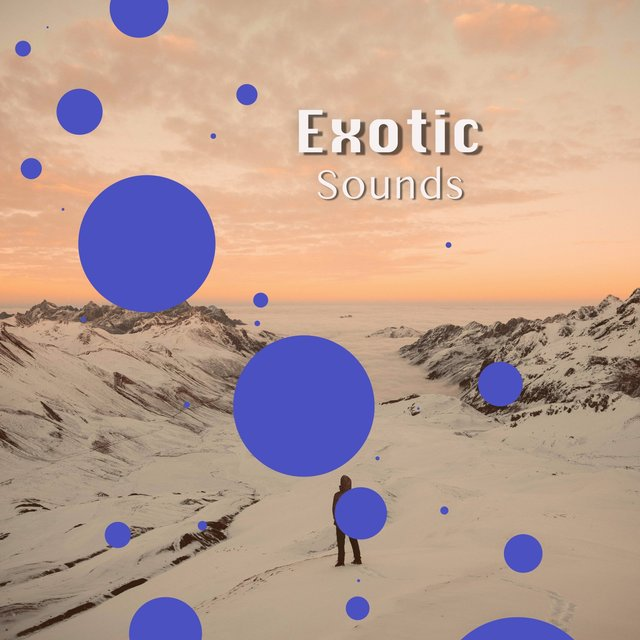 # 1 Album: Exotic Sounds