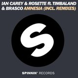 Amnesia (feat. Timbaland & Brasco) [Extended Mix]