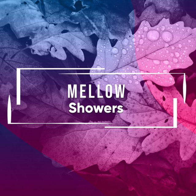 # 1 A 2019 Album: Mellow Showers