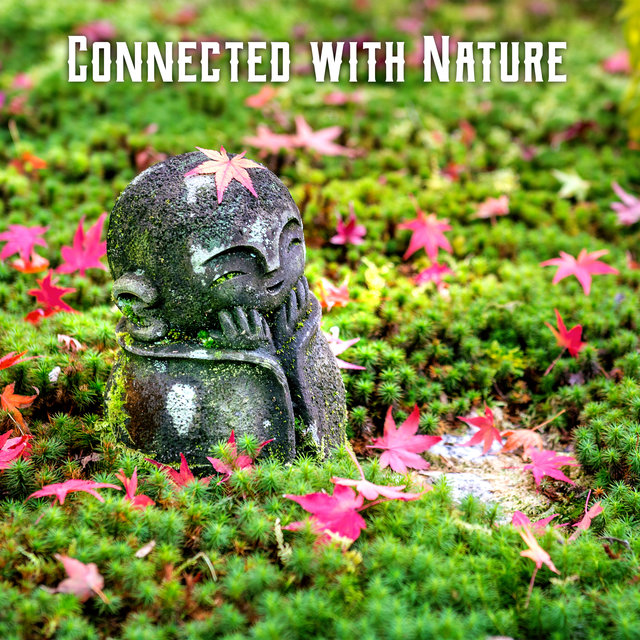 Connected with Nature - Create an Outdoor Meditation Space with Instrumental Melodies with Beautiful Nature