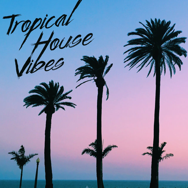 Tropical House Vibes – Energetic Chillout Music for an All-Night Party, Ibiza Lounge, Ambient Lights, EDM, Craziness, Forget about Everything, Places and Faces