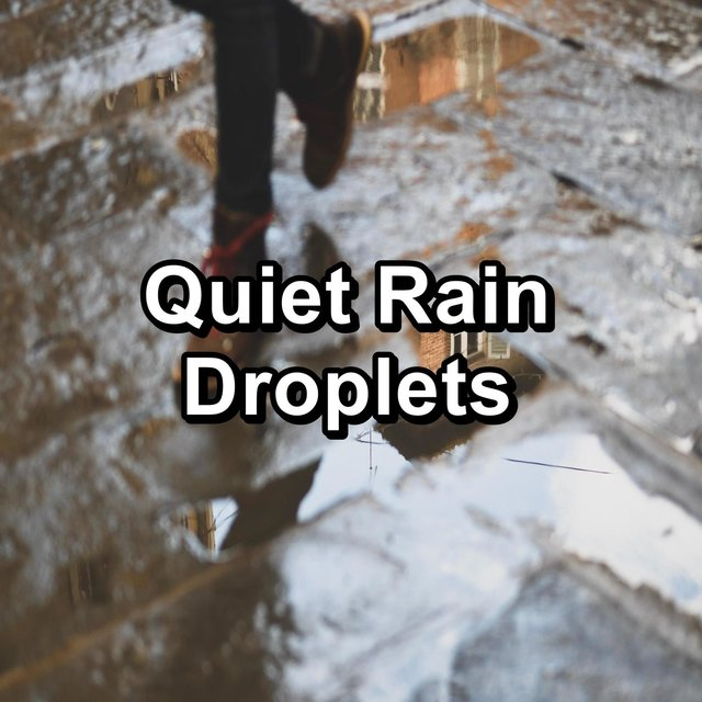 Quiet Rain Droplets