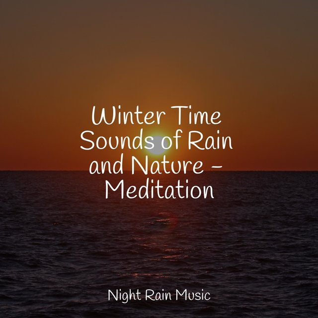 Winter Time Sounds of Rain and Nature - Meditation