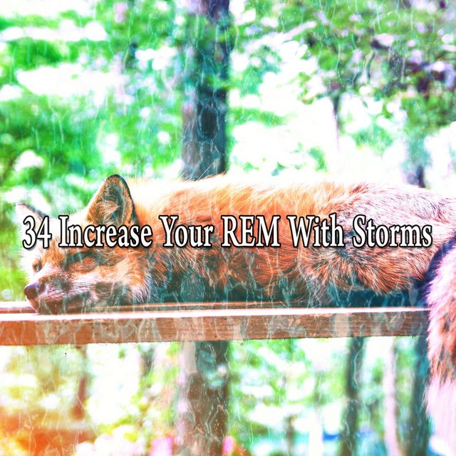 34 Increase Your Rem with Storms