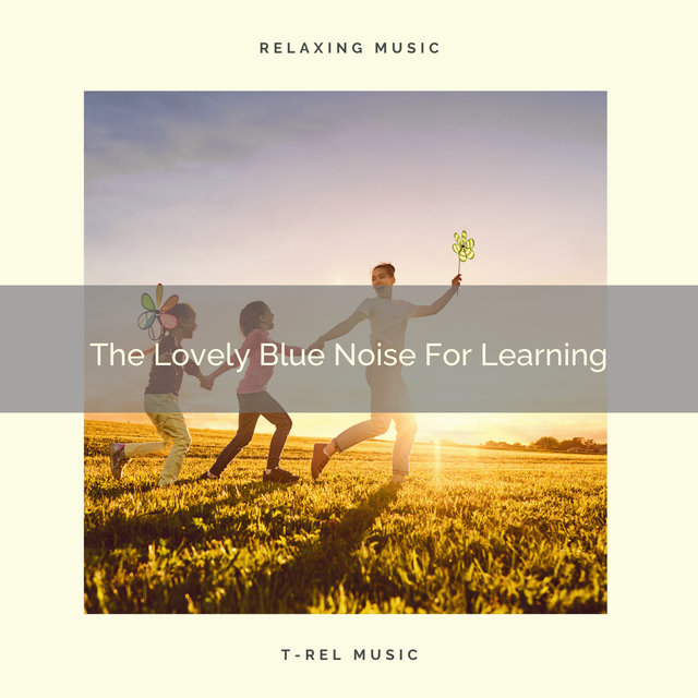 The Lovely Blue Noise For Learning