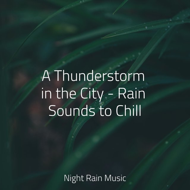 A Thunderstorm in the City - Rain Sounds to Chill