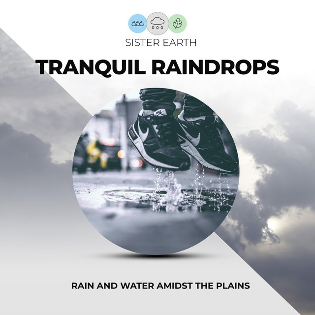 Tranquil Raindrops: Rain and Water Amidst the Plains