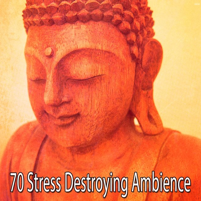 70 Stress Destroying Ambience