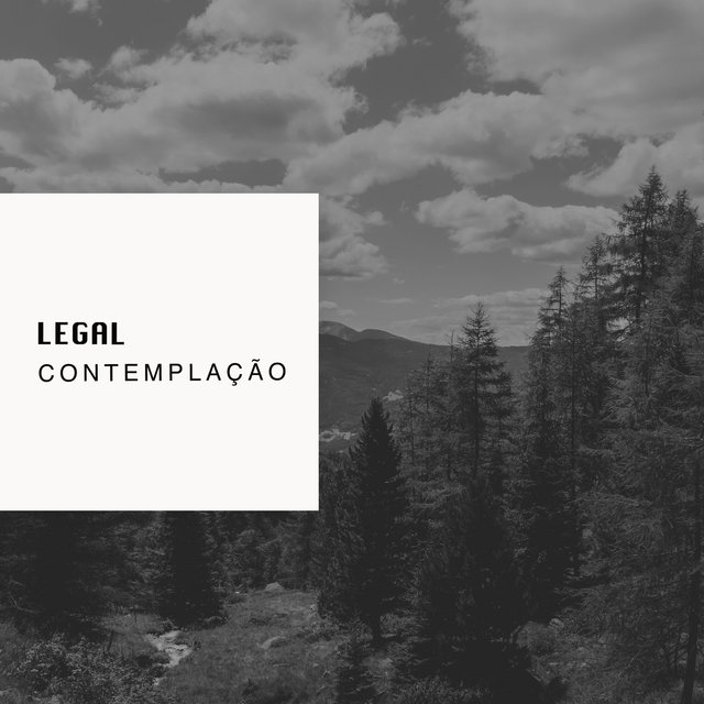 # 1 Album: Legal Contemplação