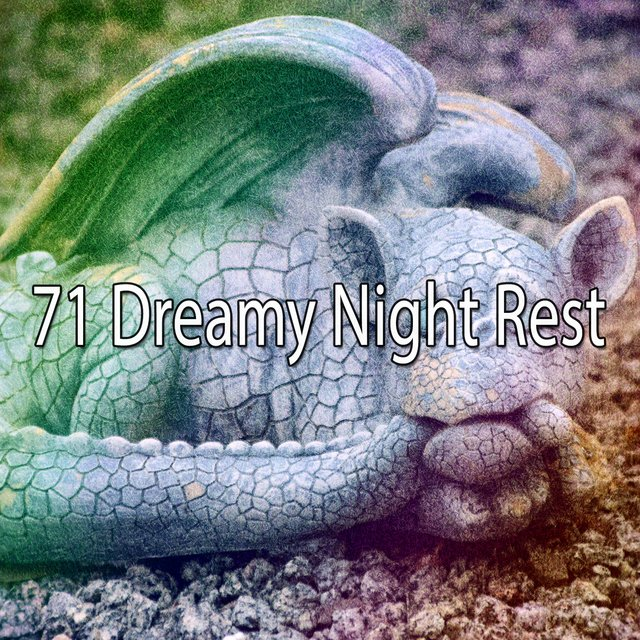 71 Dreamy Night Rest