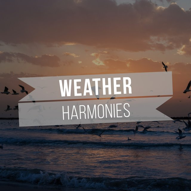 Peaceful Natural Weather Harmonies