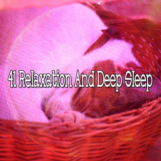 41 Relaxation and Deep Sle - EP