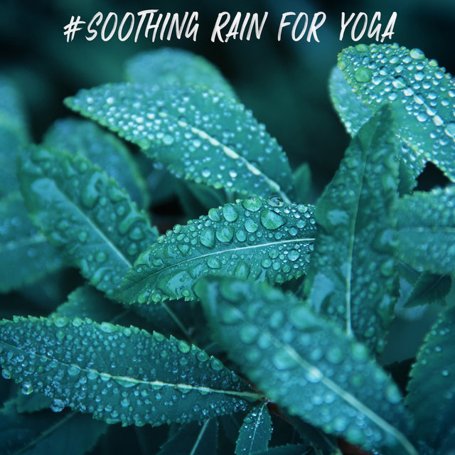 #Soothing Rain for Yoga