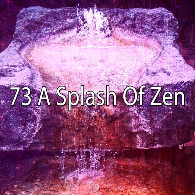 73 A Splash of Zen