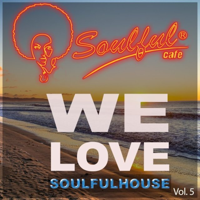 We Love Soulfulhouse, Vol. 5