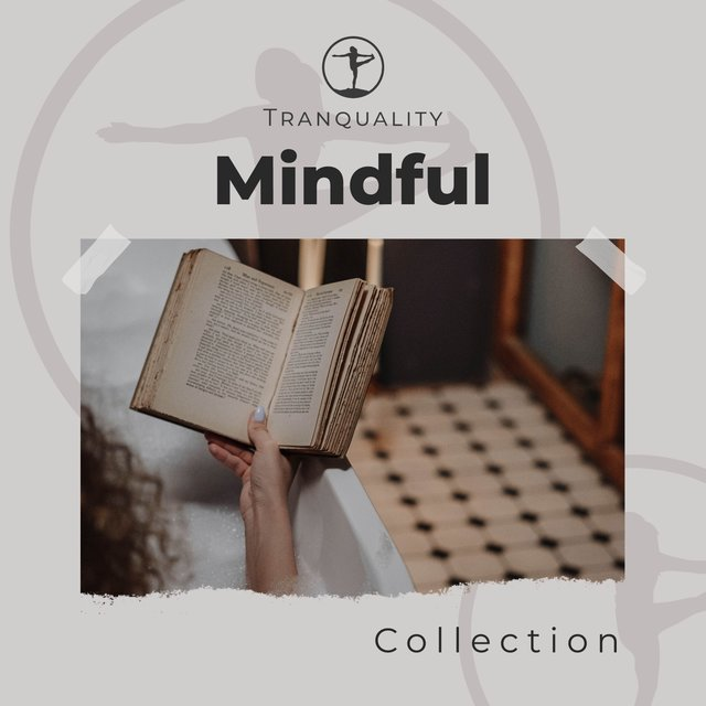 Mindful Zen Collection
