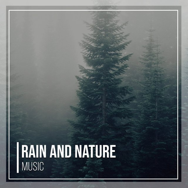 Mellow International Rain and Nature Music