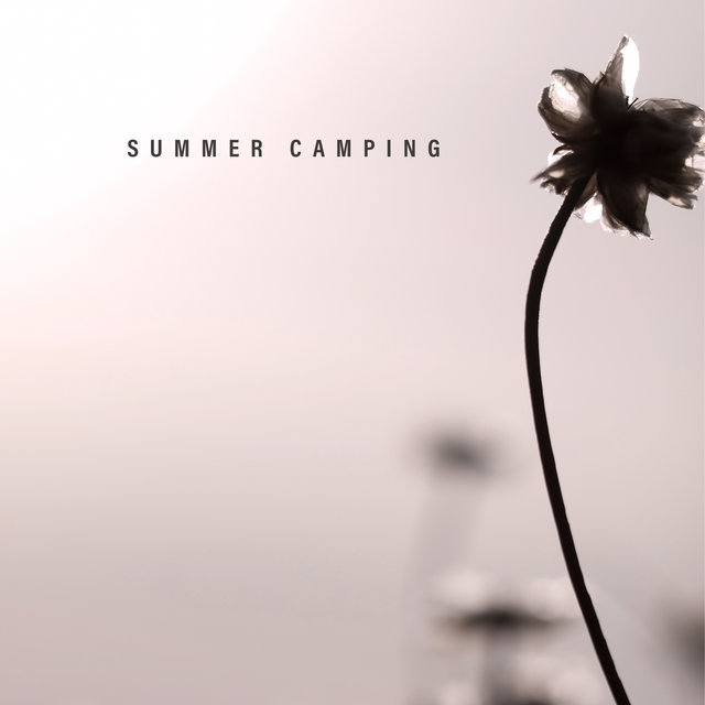 Summer Camping: Holiday Background Music for a Picnic, Relaxation in the Open Air, a Romantic Date for Two