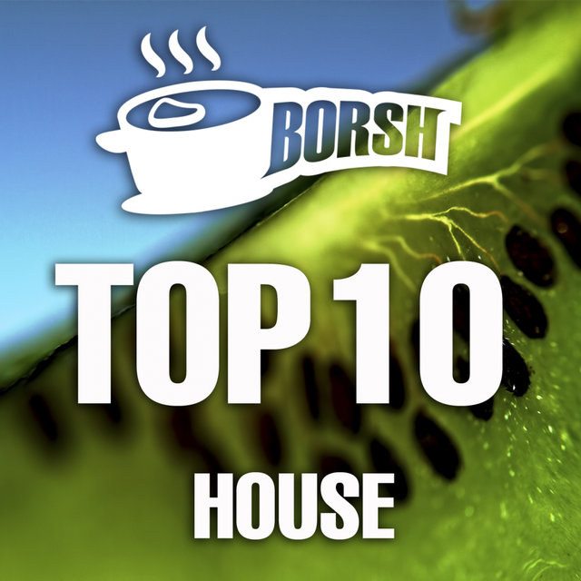Borsh Top 10 House