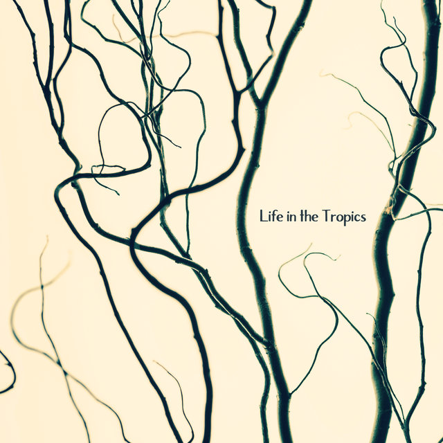 Life In The Tropics: Relaxing Music of Nature from the Equatorial Regions