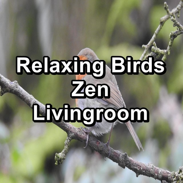 Relaxing Birds Zen Livingroom