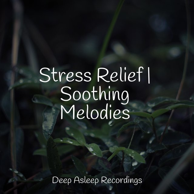 Stress Relief | Soothing Melodies